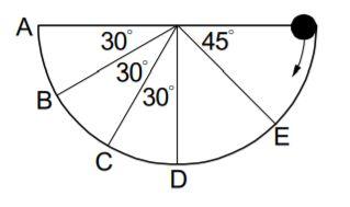 5cee30dc3a661.jpg