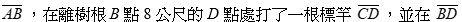 5cf47142343ab.jpg