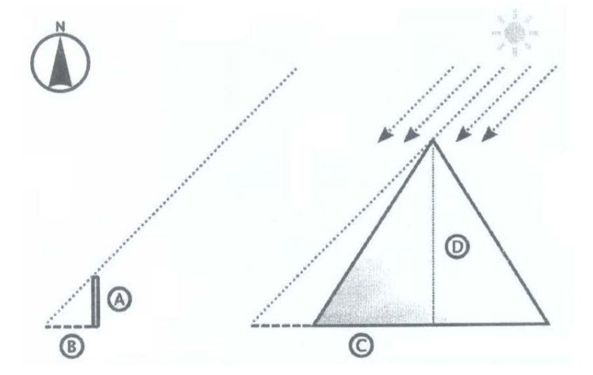 5de5bd4b7b248.jpg
