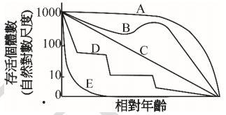 5ec491b3e47a9.jpg