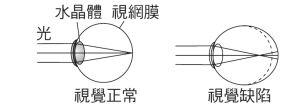 5ef04c62ac1a5.jpg