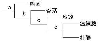 5f7c06a0195e2.jpg