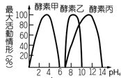 600a6f8248c3d.jpg