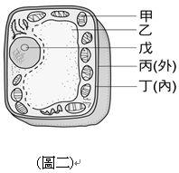 609e0a53f2a6b.jpg